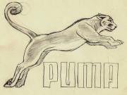 沧桑的历史,回顾Puma与竞技体育走过的70年