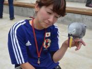 国内鹦鹉预测:日本负哥伦比亚