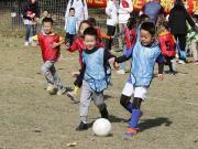 克罗地亚足协官员:中国足球硬件完备,软件还需提升